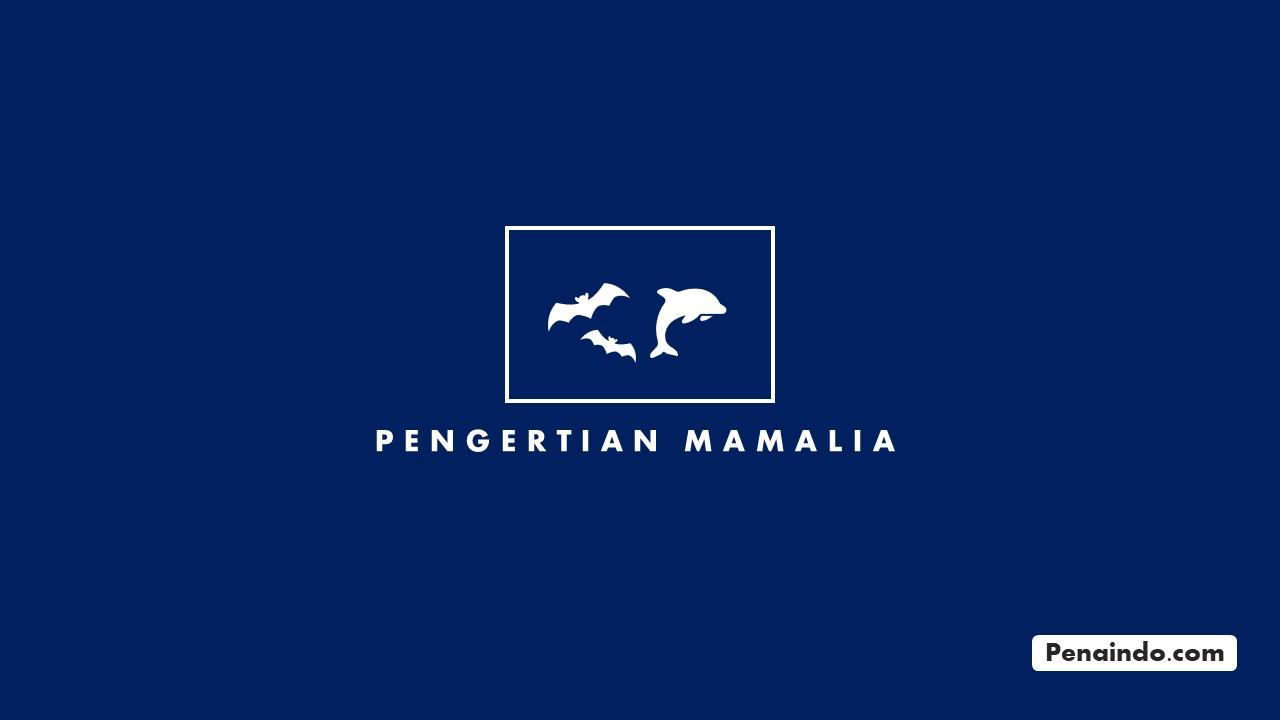 pengertian mamalia